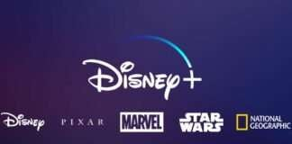 Why Have Most Of The People Subscribed To Disney+?