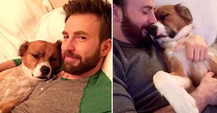 Chris-evans-and-his-pet-dog.jpg