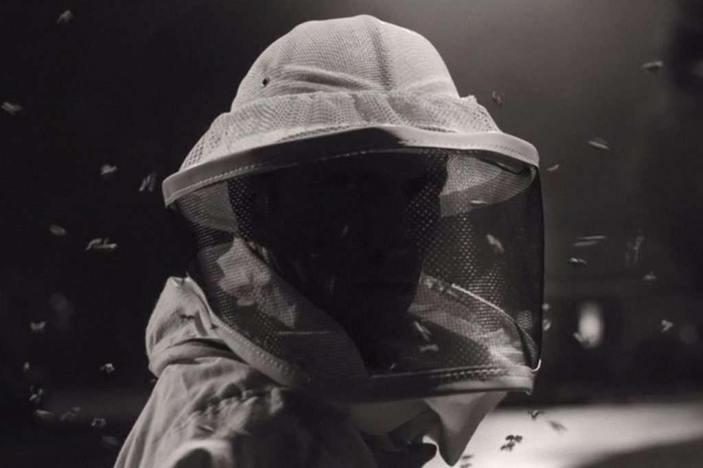 beekeeper-wandavision.jpg
